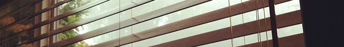 contact-lemn